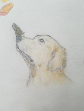 Good Pup - Elijah Jones