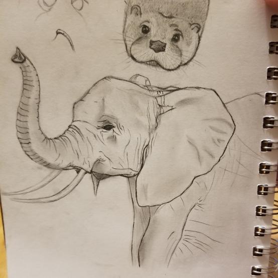 Elephant and Otter - Elijah Jones