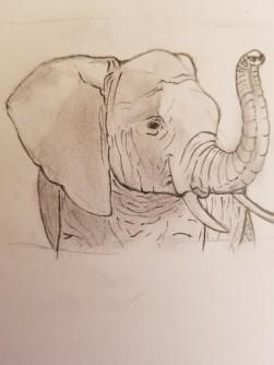 Elephant - Elijah Jones