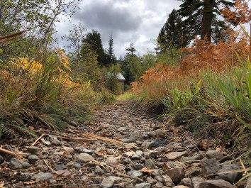 Creek - Leaving