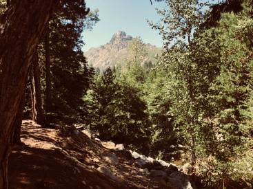 Mountain - Leaving